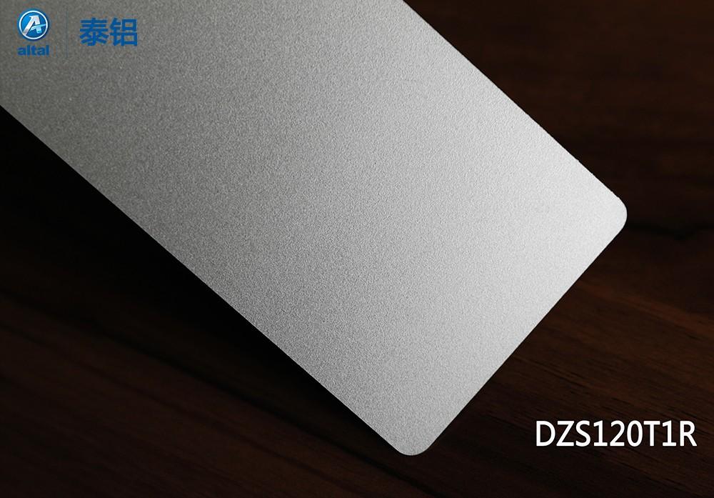 DZS120T1R